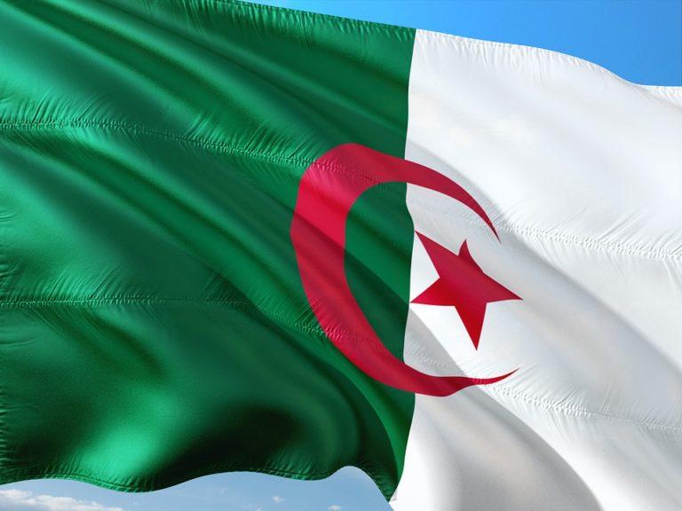 Le drapeau vert et blanc de l'Algérie flottant dans le ciel
