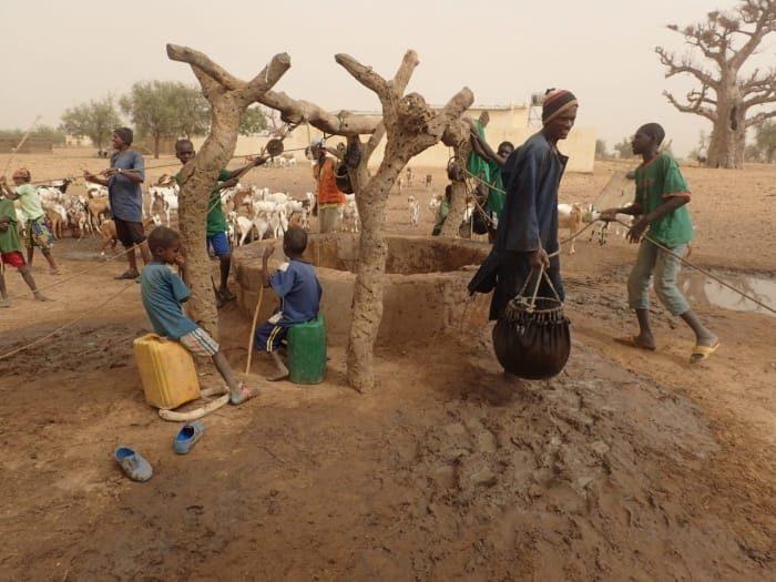 Un puits communautaire dans un village maliens. Des hommes et des enfants entourent le puits en terre séchée. En arrière plan un troupeau de chèvres