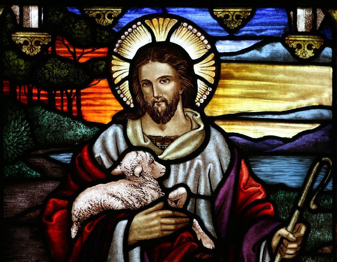 Vitrail de l'église anglicane Saint-Jean-Baptiste-d'Ashfield, en Nouvelle-Galles du Sud (Australie). Le vitrail illustre la description de Jésus par lui même dans l'évangile de Jean : «Je suis le bon berger. Le bon berger donne sa vie pour ses brebis.»