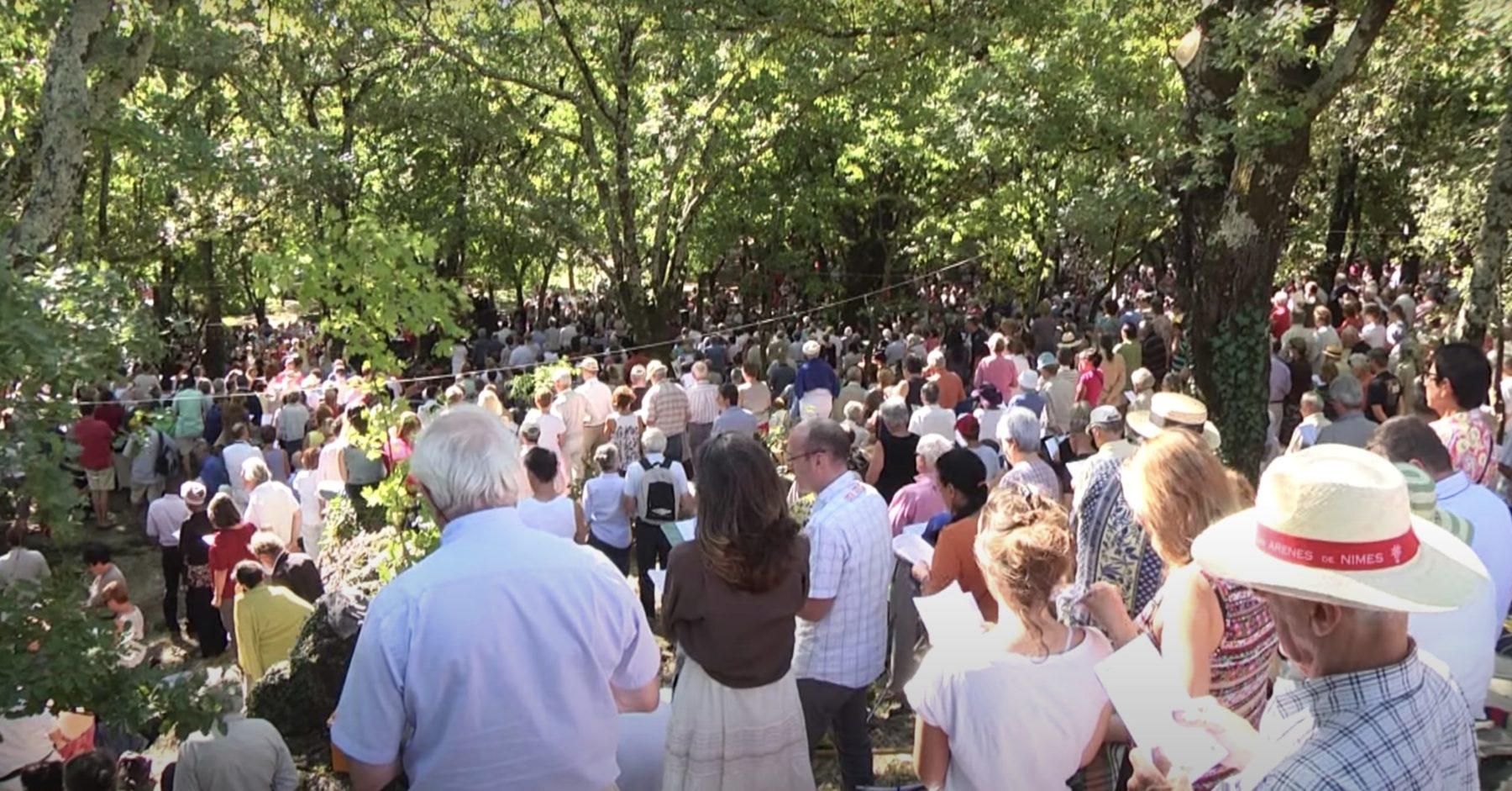 L'Assemblée du Désert en 2013. Une foule est rassemblée sous les arbres
