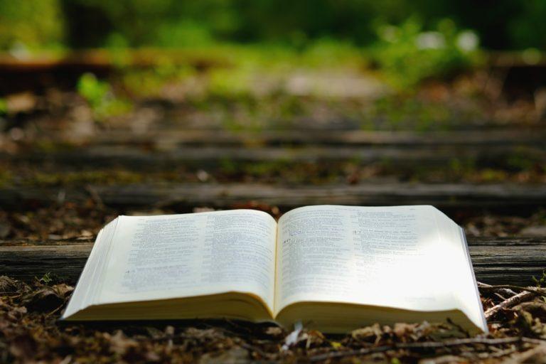 Une Bible ouverte et posée sur le sol dans la nature
