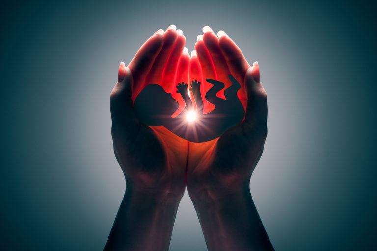 La silhouette d'un embryon entre les mains d'une femme