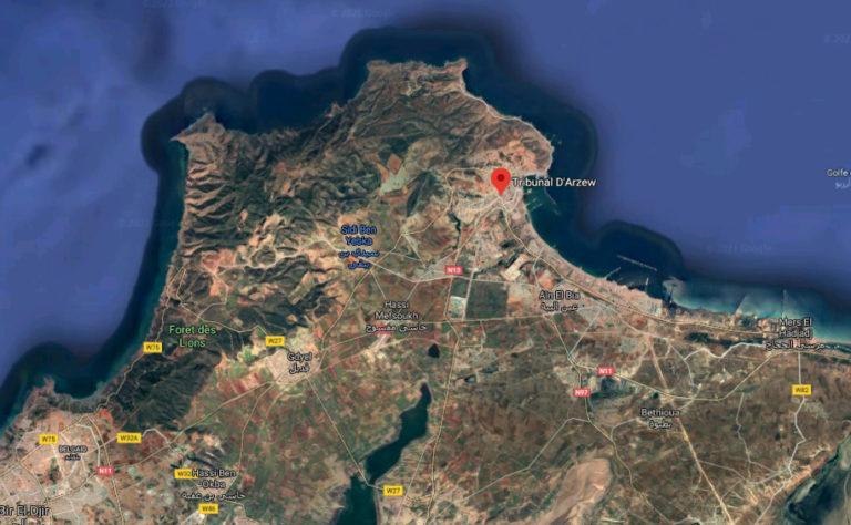 Vue aérienne d'Arzew et de sa région