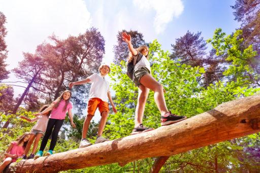 Un groupe d'enfants marchant les uns après les autres sur une gros tronc dans la forêt pendant un jeu d'orientation en nature