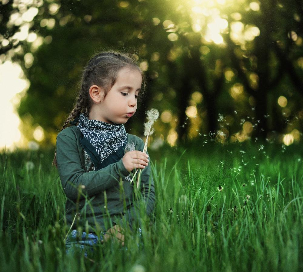 Une petite fille souffle sur un pissenlit